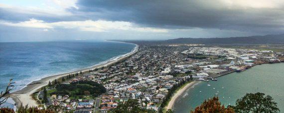 Bay of Plenty Business Directory